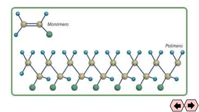 Ova polimeros 31 32 ccuart Images