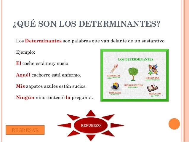 Q Son Los Lemures Prof. Olga Gomez Ova l...