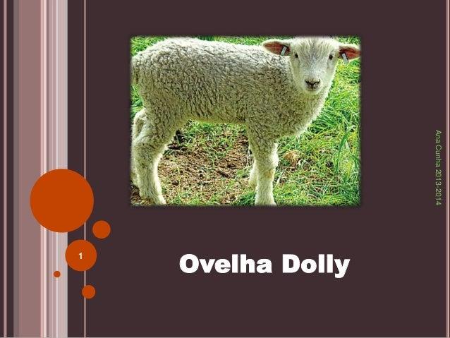 Ana Cunha 2013-2014  Ovelha Dolly 1