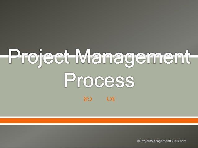   © ProjectManagementGurus.com
