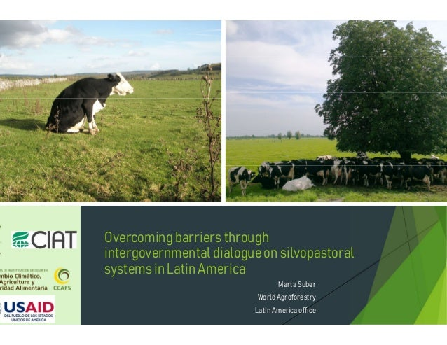 Overcomingbarriers through intergovernmentaldialogueon silvopastoral systems in Latin America Marta Suber World Agroforest...