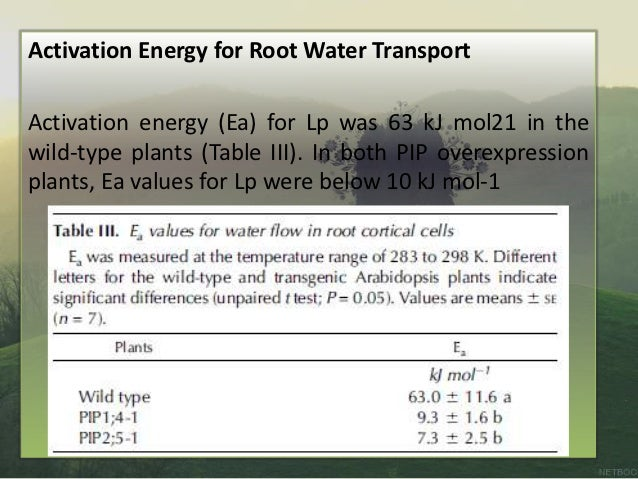 aquaporin pi water Other evidence for a direct role of aquaporins in plant water relations comes from the manipulation of aquaporin gene expression by over-expression (pi 38) with.