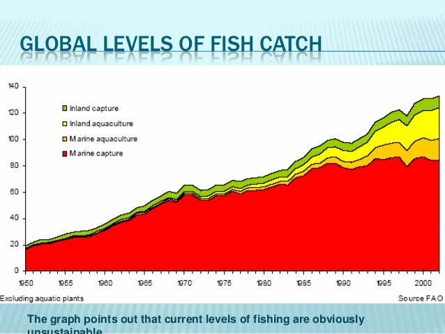 overfishing fish stocks But subsidies can harm fish stocks when the payments allow fishers to  is a lethal one, causing overfishing in many fisheries around the world.