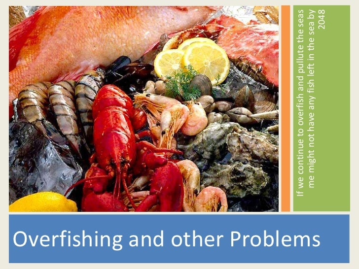 If we continue to overfish and pullute the seas                                     me might not have any fish left in the...