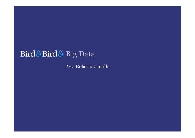 Big DataAvv. Roberto Camilli