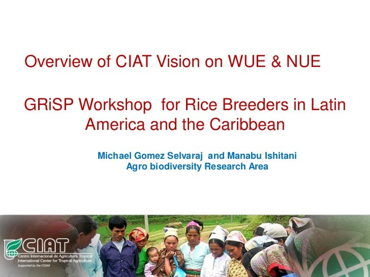 Overview of CIAT Vision on WUE & NUEGRiSP Workshop for Rice Breeders in Latin      America and the Caribbean         Micha...