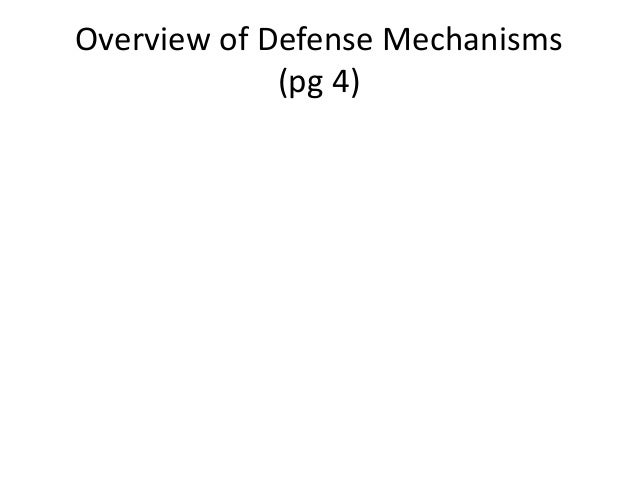 Overview of Defense Mechanisms(pg 4)