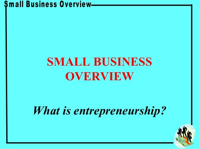 SMALL BUSINESS    OVERVIEWWhat is entrepreneurship?