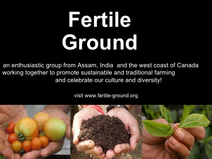 Overview of fg projects 2011 assam