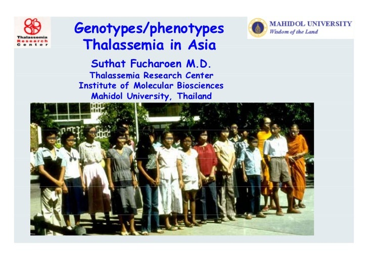 Genotypes/phenotypes Thalassemia in Asia  Suthat Fucharoen M.D.  Thalassemia R  Th l       i Research C t                 ...