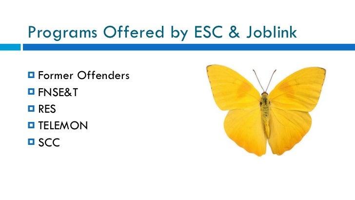Programs Offered by ESC & Joblink <ul><ul><li>Former Offenders </li></ul></ul><ul><ul><li>FNSE&T </li></ul></ul><ul><ul><l...