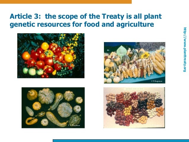 an overview of agriculture and food Overview of food allergies food allergy: an overview us department of agriculture wwwusdagov us food and drug administration.