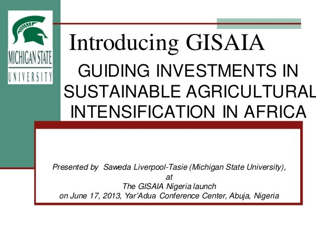Introducing GISAIAGUIDING INVESTMENTS INSUSTAINABLE AGRICULTURALINTENSIFICATION IN AFRICAPresented by Saweda Liverpool-Tas...