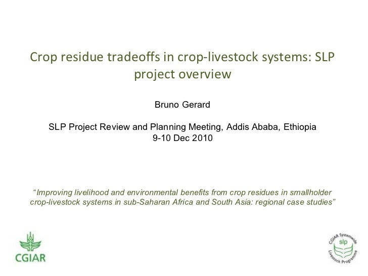 <ul><li>Crop residue tradeoffs in crop-livestock systems: SLP project overview </li></ul><ul><ul><li>Bruno Gerard </li></u...