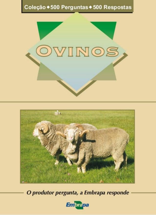 O produtor pergunta, a Embrapa responde Ovinos