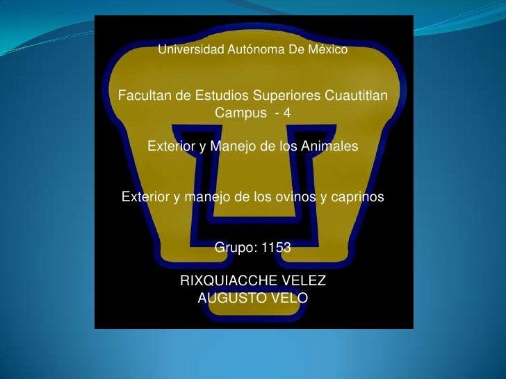Universidad Autónoma De MéxicoFacultan de Estudios Superiores Cuautitlan               Campus - 4    Exterior y Manejo de ...