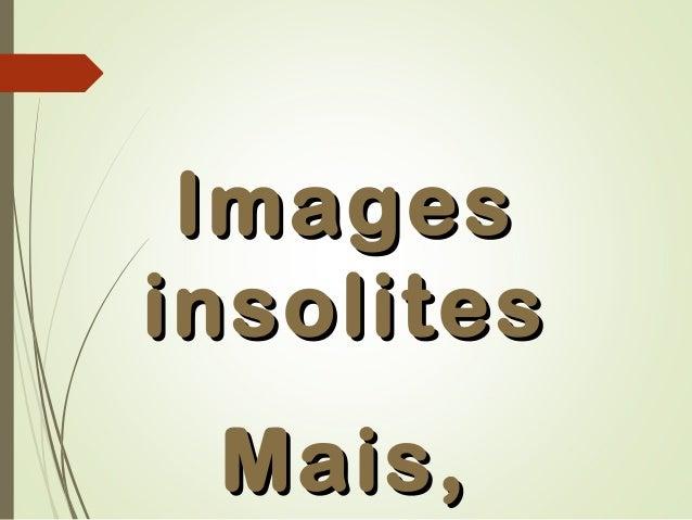 ImagesImages insolitesinsolites Mais,Mais,