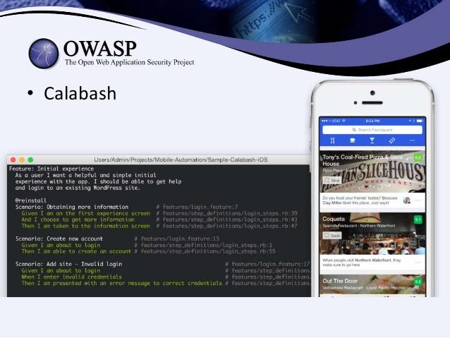 owasp application security verification standard 2017