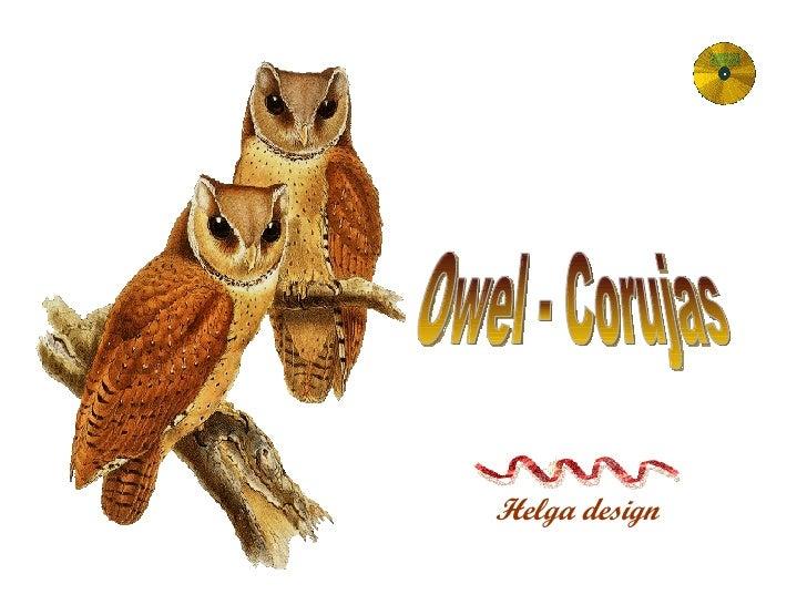 Helga design Owel - Corujas