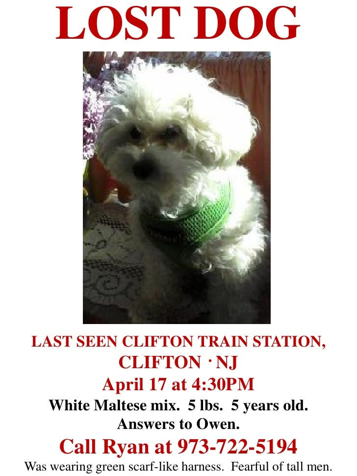 LOST DOG LAST SEEN CLIFTON TRAIN STATION,          CLIFTON . NJ              April 17 at 4:30PM    White Maltese mix. 5 lb...