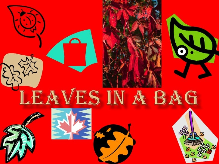 leaves in a bag<br />