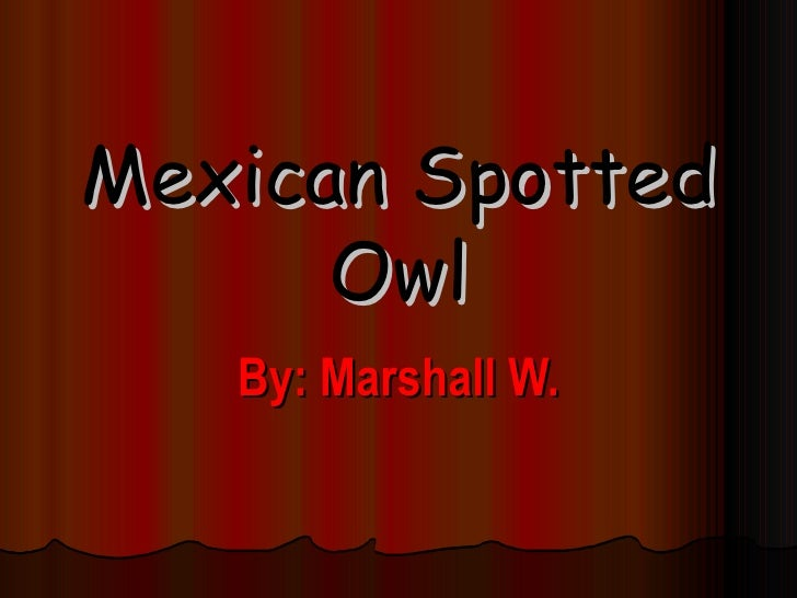 Mexican Spotted Owl By: Marshall W.