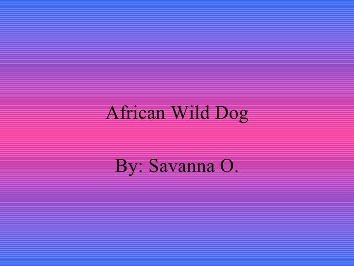 African Wild Dog By: Savanna O.