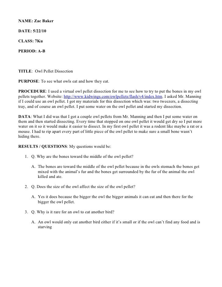 Owl pellet dissection – Owl Pellet Dissection Worksheet
