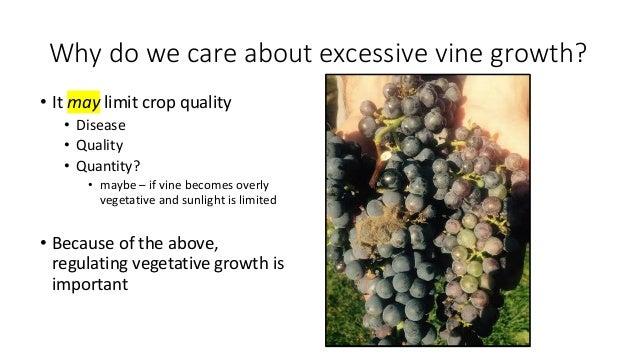 2018 Oregon Wine Symposium Techniques For Managing High