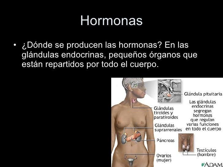 Conocer Ciencia - Cuerpo Humano 6 (Sistema hormonal - El hígado)