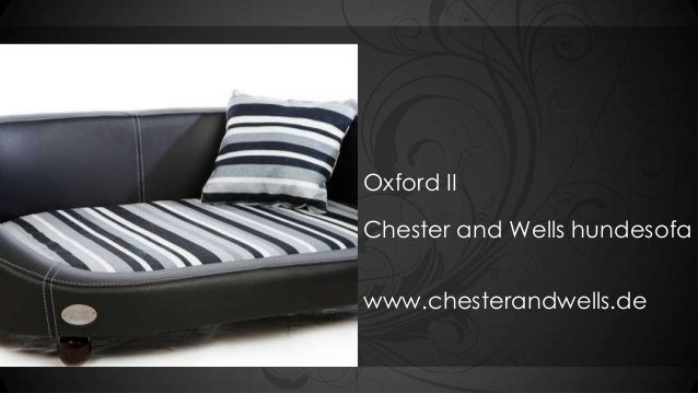 Oxford IIChester and Wells hundesofawww.chesterandwells.de