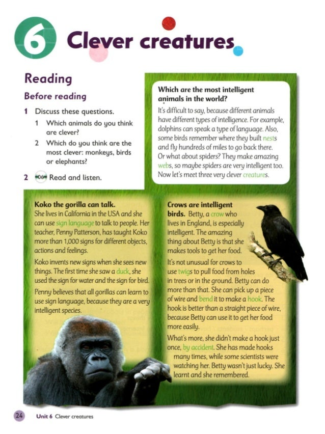 Oxford Primary Skillsbook - 25 intelligent animals world