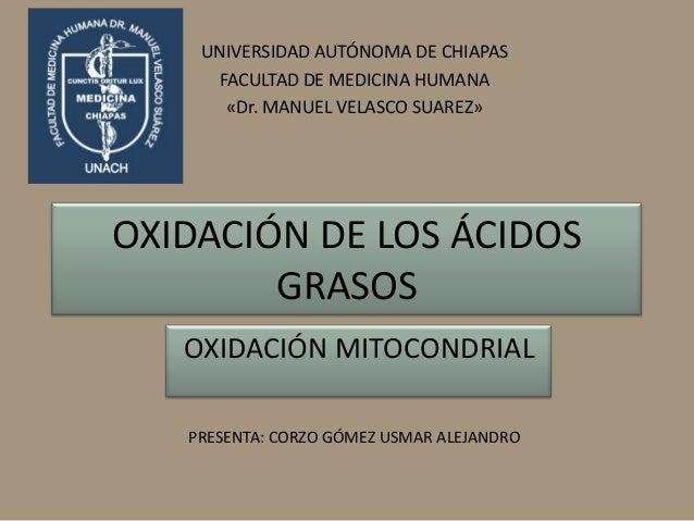 UNIVERSIDAD AUTÓNOMA DE CHIAPAS     FACULTAD DE MEDICINA HUMANA      «Dr. MANUEL VELASCO SUAREZ»OXIDACIÓN DE LOS ÁCIDOS   ...