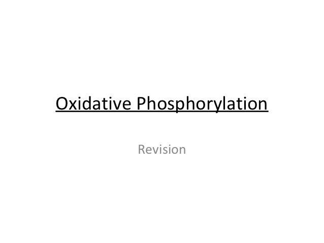 Oxidative Phosphorylation         Revision