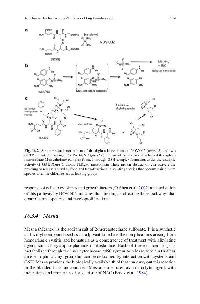 Oxidative Stress And Redox Regulation