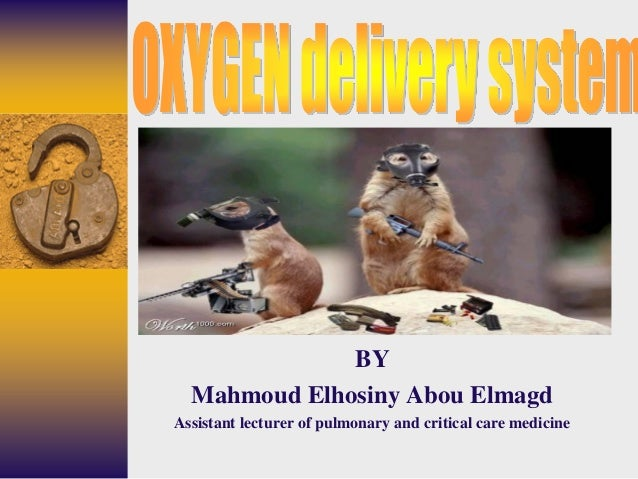 BY Mahmoud Elhosiny Abou Elmagd Assistant lecturer of pulmonary and critical care medicine