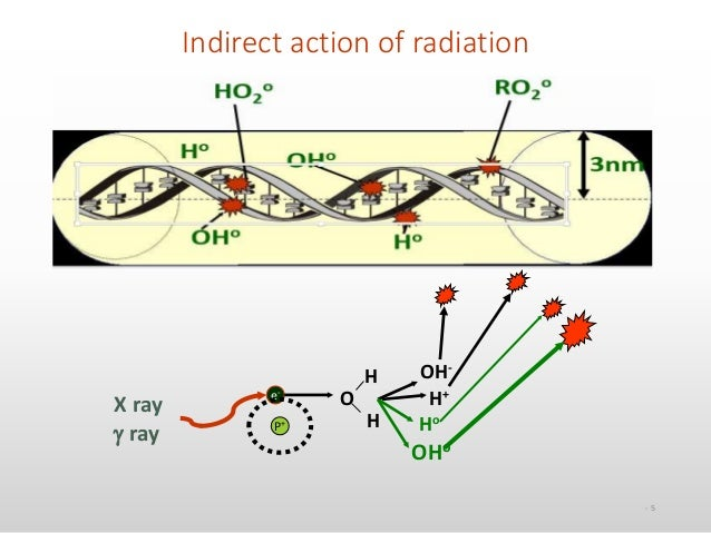 the oxygen effect in radiobiology essay Specialized papers of macromomycin aclacino but the still-controversial facet of a reduced cellular oxygen effect is not radiobiology for the radiologist.