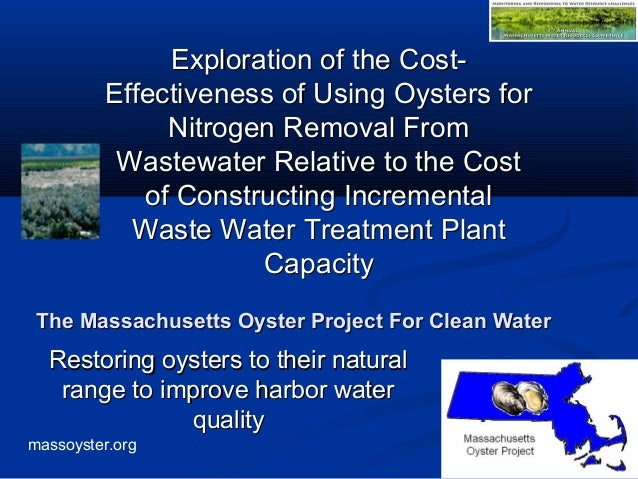 massoyster.org The Massachusetts Oyster Project For Clean WaterThe Massachusetts Oyster Project For Clean Water Restoring ...
