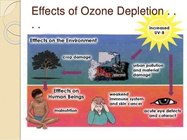 the growing concern over depleting ozone layer and its effects Ozone layer and causes of ozone depletion: ozone layer is a deep layer in earth's atmosphere called stratosphere that contain ozone which is a these targeted efforts have seen the ozone layer recovering over the past years the thickness of the ozone layer varies immensely on any day and.