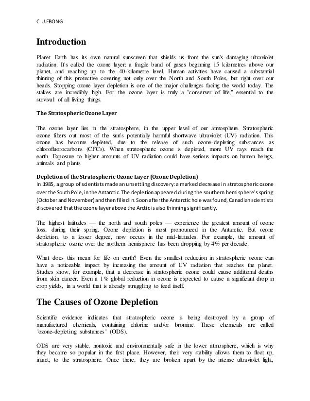 essay on protection of ozone layer