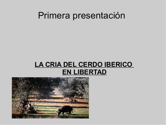 Primera presentación LA CRIA DEL CERDO IBERICO EN LIBERTAD