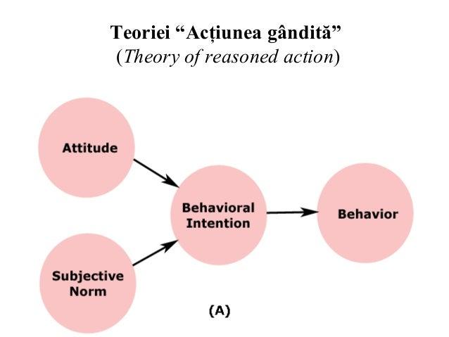 icek ajzen theory of planned behavior pdf