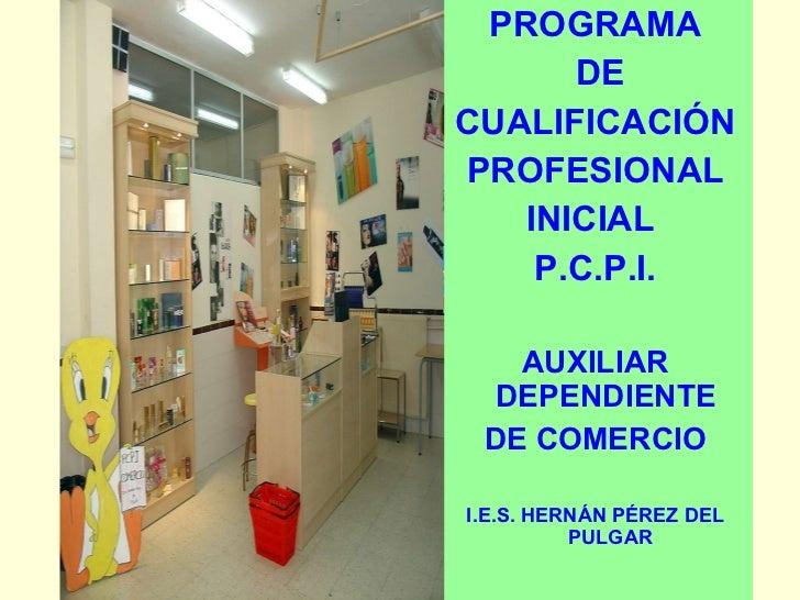 <ul><li>PROGRAMA </li></ul><ul><li>DE </li></ul><ul><li>CUALIFICACIÓN </li></ul><ul><li>PROFESIONAL  </li></ul><ul><li>INI...