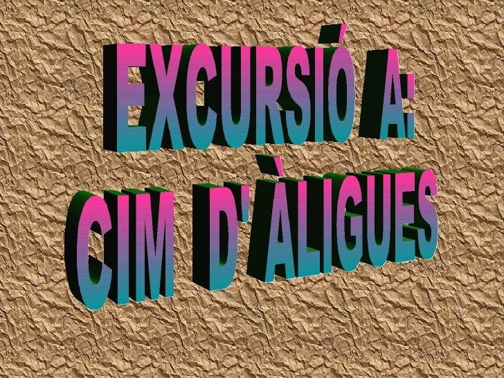 EXCURSIÓ  A: CIM  D' ÀLIGUES