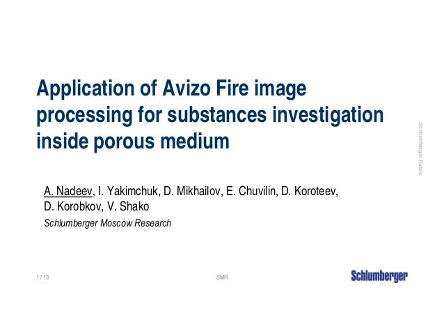 Application of Avizo Fire imageprocessing for substances investigation                                                    ...