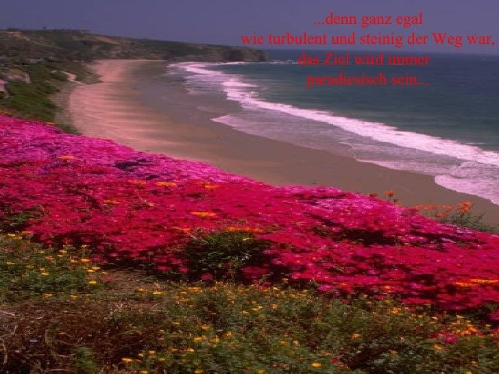 ...denn ganz egal wie turbulent und steinig der Weg war, das Ziel wird immer  paradiesisch sein...