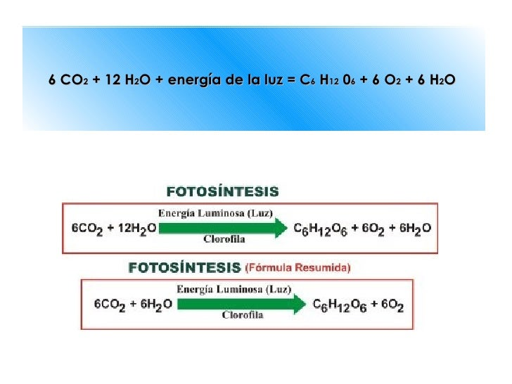 Cual es la ecuacion balanceada de la fotosintesis 4