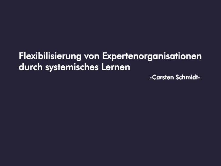 Flexibilisierung von Expertenorganisationendurch systemisches Lernen                              -Carsten Schmidt-