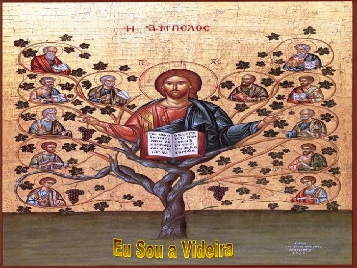 'A Liturgia nos fala da UNIDADE profunda dos discípulos        com o Ressuscitado, através da imagem da VIDEIRA           ...