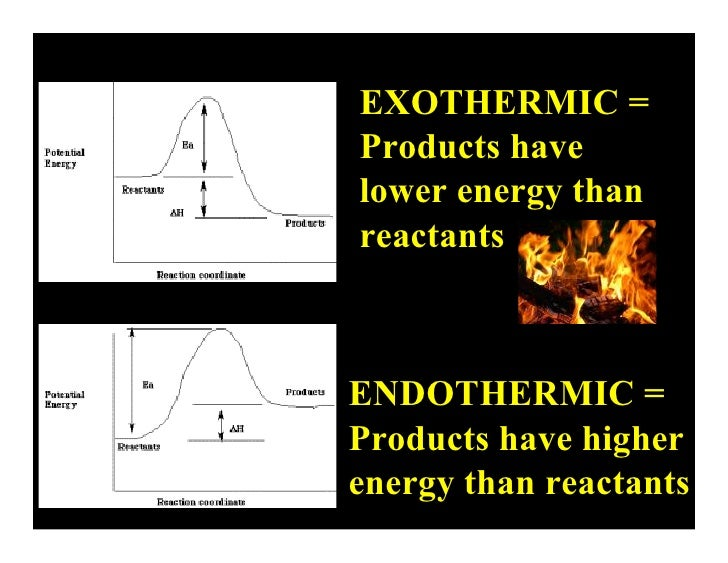 Lecture 17.1- Endothermic vs. Exothermic